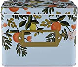 Yesland Caja de recetas, 16 x 10 x 12 cm, caja decorativa de hojalata con...