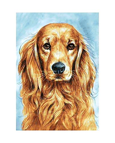 YHZSML 5D Diamond Painting By Number Kits_Golden Retriever Diamond Painting 30x40cm_Diamonds Embroidery Cross Stitch Art Crafts for Home Wall Decor Adults And Kids