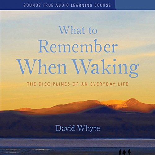 What to Remember When Waking audiobook cover art