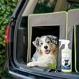 Geruchsneutralisierer für Hunde – natürlicher Entferner von Urin-Geruch - 6