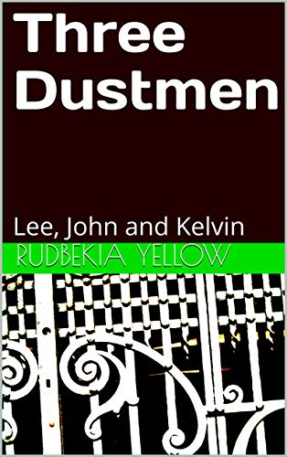 Three Dustmen: Lee, John and Kelvin (English Edition)