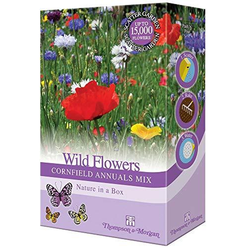 Wildflower Annuel Champ de Maïs Plante Jardin Graines Cultivez Votre Propre Bleuets & Herbes 1 X 15g Assortiment Paquet par Thompson & Morgan