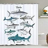 Hai Duschvorhang Marine Thema Sealife Duschvorhang, Fisch Duschvorhang mit 12 Haken, Wasserdicht Langlebig Badvorhänge