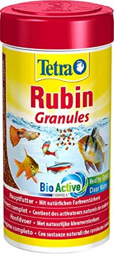 TetraRubin, Hauptfutter in Granulatform mit natürlichen Farbverstärkern für Zierfische, für intensive Farbenpracht, 250 ml Dose