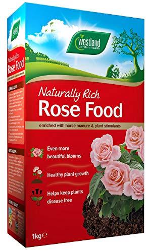 Westland Horticulture - Rosendünger, Größe 1 kg