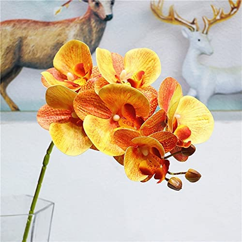 Artificial and Dried Flower Cheap mail order sales 10 Pieces Set Phalaenopsis Sales of SALE items from new works Artific