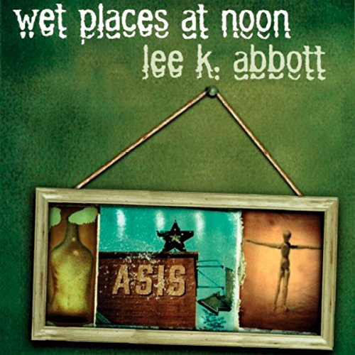 Wet Places at Noon audiobook cover art