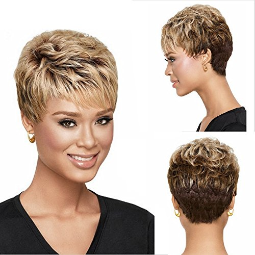 GNIMEGIL Short Blonde to Brown Synthetic Wig Wavy Hair Wigs for Women Natural Looking Heat Resistant Wigs with Wig Cap (Wig head circumference size is 20-24inches)