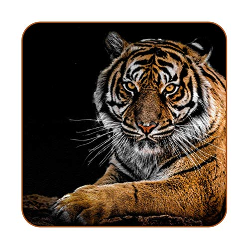 Animal Tiger - Posavasos de piel sintética para bebidas, paquete de 6 posavasos cuadrados para bebidas para el hogar o el bar, regalo de inauguración de la casa