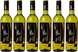 Tall Horse Chardonnay Vin Blanc d'Afrique du Sud 2018 - 13,5%vol - Lot de 6 x 750 ml