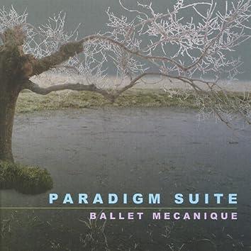 Paradigm Suite