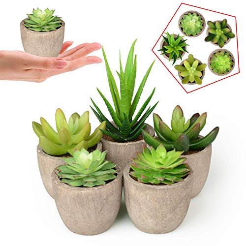 Lot de 5 Plantes Grasses artificielles