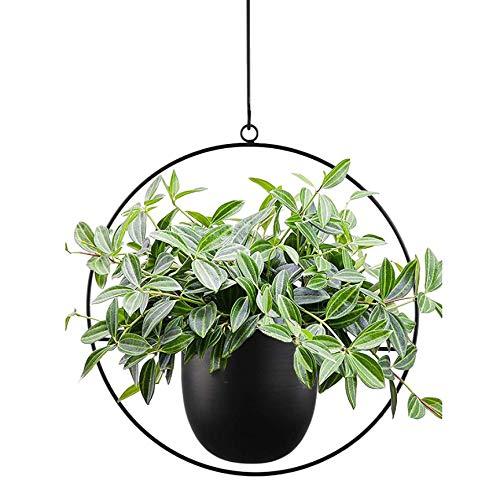TENMEDARY Hängende Blumenampel Metall Blumentopf Schwarz Pflanzenampel für Innen Außen Terrasse Balkon Zimmerpflanzen, Sukkulenten, Luftpflanzen (Schwarz Rund)