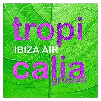 Tropicalia Groove