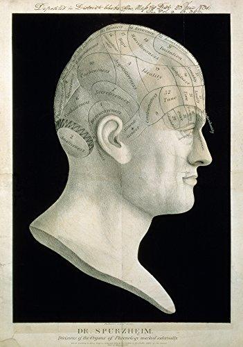 Busto de Johan Spurzsheim Nportrait Busto de Johan Kaspar Spurzheim (1776-1832) el Padre de la frenología Utilizado como un gráfico...