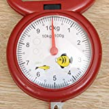 Rainandsnow 1 PC 10 kg báscula de Primavera portátil de Moda Creativa para el hogar Colgante mecánico Mini Balanza de Resorte Manual Utensilios de Cocina