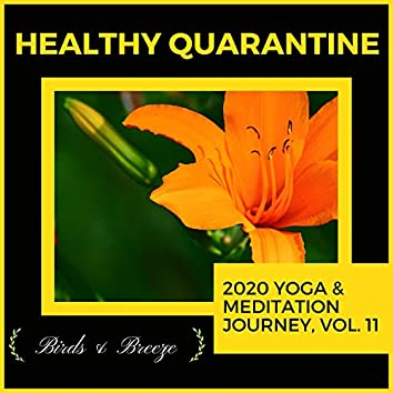 Healthy Quarantine - 2020 Yoga & Meditation Journey, Vol. 11