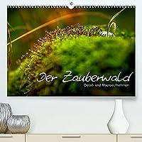 Der Zauberwald - Detailaufnahmen (Premium, hochwertiger DIN A2 Wandkalender 2022, Kunstdruck in Hochglanz): Krafttankstelle Wald - Lassen Sie sich verzaubern (Monatskalender, 14 Seiten )
