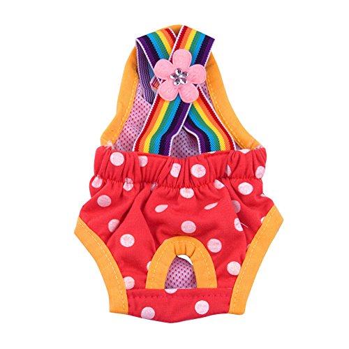 Smniao Hygieneunterhose für Hündinnen Regenbogen Hundewindeln Inkontinenz Teddy Hund Katze Windel Schutzhose Unterwäsche (XL, Rot)