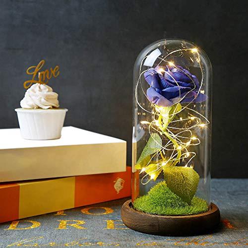 Powstro Lampada con Ornamenti di Rose, Lampada a LED in Vetro Rosa immortale con Simulazione Romantica, Luce Decorativa per Camera da Letto Regalo di Anniversario di San Valentino