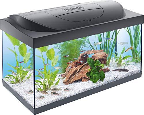 Tetra Starter Line Acquario LED 54 L - Set Completo con Illuminazione a LED, Acquario Stabile per Principianti con Tecnologia, Cibo e Prodotti per la Cura, Nero