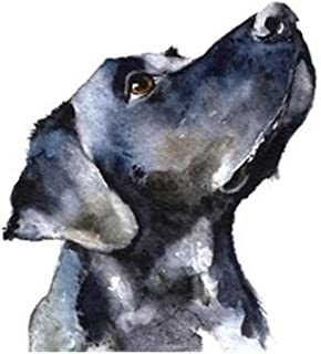 Aphila Diamond Painting Kits for Adults Round Drills Full Resin Rhinestones Embroidery Cross Stitch Decor Gift Labrador Retriever 30x40cm/12