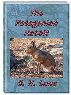 The Patagonian Rabbit