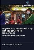 Impact van motortaxi's op het jeugdwerk in Kameroen:: Regio's Centraal en Verre Noorden
