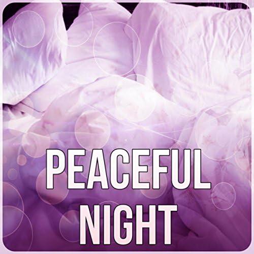 Nighty Night Masters
