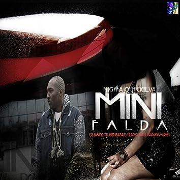 Mini Falda (Cuando Te Meneabas)