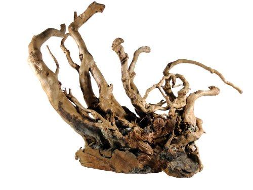 Rote Moorwurzel 25-35 cm, Finger Wood