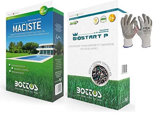 Maciste, Sementi per tappeto erboso ideale per zone aride 1Kg + Concime Fertilizzante per Prato Bottos Bio Start 12-20-15- 2 Kg * inclusi GUANTI VF UTILIA IN NITRILE/NYLON *
