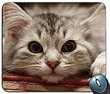 Mausepad Schöne Katze Katze Maulkorb Flauschiger Gummi Personalisierte Kundenspezifische Computer Mousepad Rutschfeste Komfortable Rechteck Bedruckte Mausmatte Spiel 25X30Cm