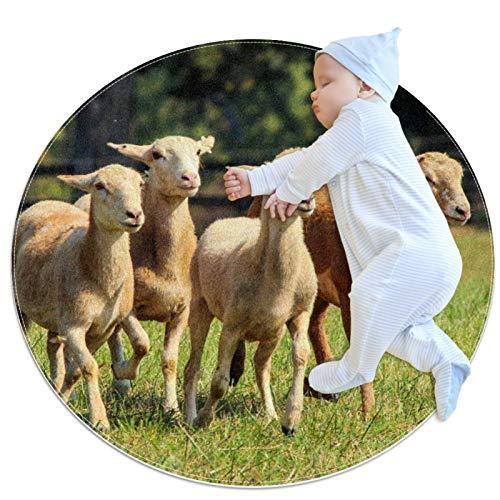 Alfombra de gateo para niños, diseño de oveja, redonda, suave, moderna, antideslizante, para decoración de habitaciones de 39.4 x 39.4 pulgadas