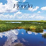 Florida Wild & Scenic 2020 7 x 7 Inch Monthly Mini Wall Calendar, USA United States of America Southeast State Nature (English, Spanish and French Edition)
