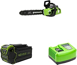 Greenworks Cordless Chainsaw GD40CS15 + 40V Battery G40B6 + Tools Battery Fast Charger G40UC4