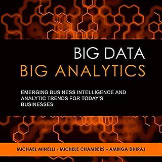 Big Data, Big Analytics audiobook cover art