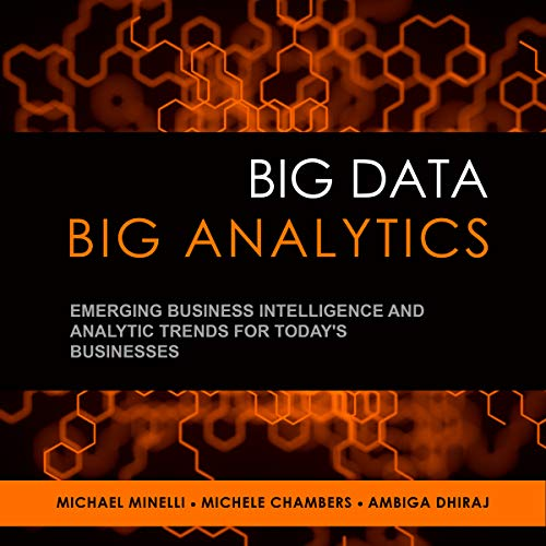 Big Data, Big Analytics cover art