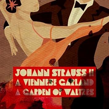 Johann Strauss II: A Viennese Garland - A Garden of Waltzes