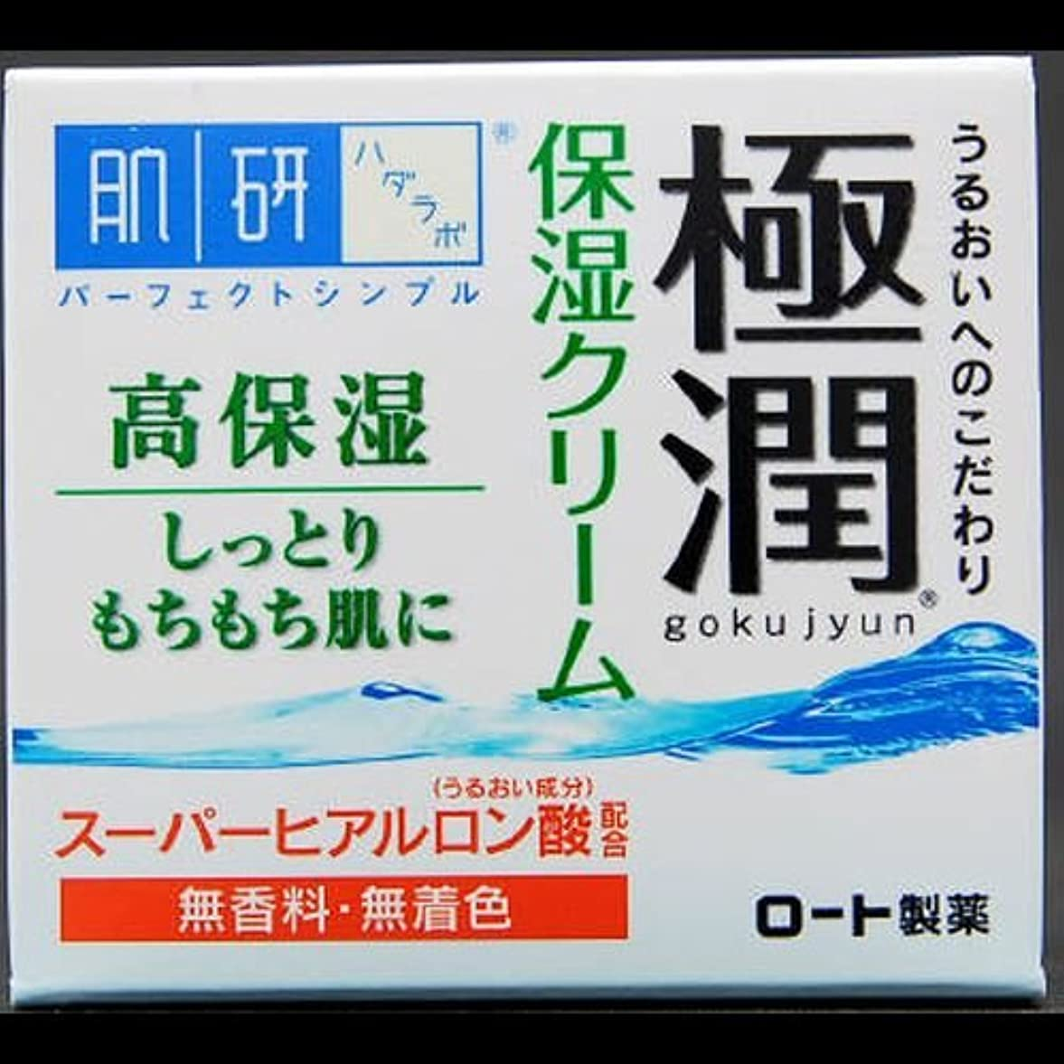 ホース葉を集める植物学【まとめ買い】肌研 極潤 ヒアルロンクリーム 50g ×2セット