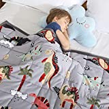 Haowaner Cooling Cotton Kids Weighted Blanket 10lbs 41 x 60 inches, Soft Kids and Toddler Comforter Great for Calming and Sleeping, Child Bed Size, Dinosaur-Grey