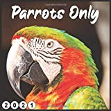 Parrots Only: 2021 wall & Office Calendar 16 Monthe Sep.2020 to Dec.2021
