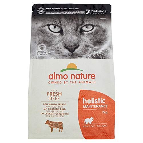 Almo Nature Chat Holistic Boeuf et Riz 2 kg