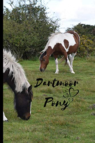 Dartmoor Pony Notebook: Composition Notebook 6x9' Blank Lined Journal