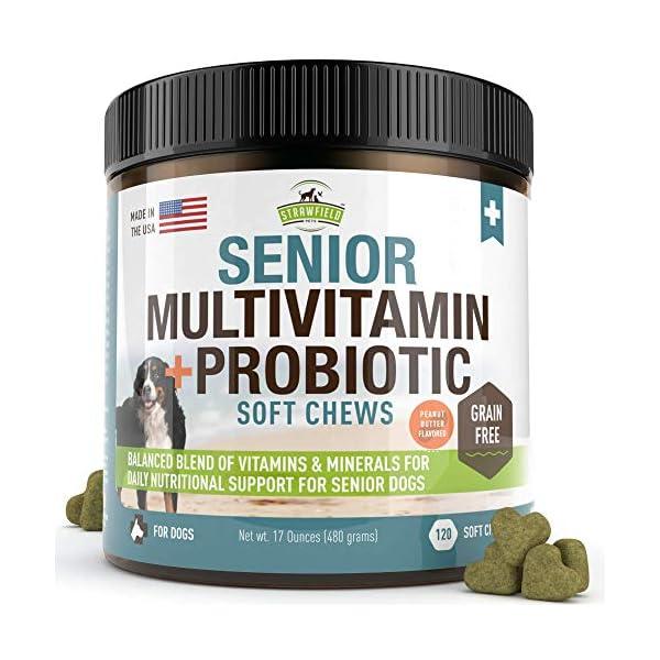 Senior Dog Vitamins and Supplements -120 Grain-Free Chewable Multi Vitamin –...