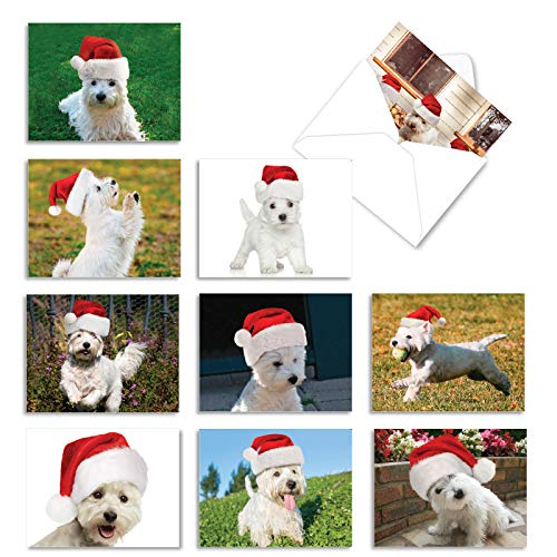 The Best Card Company - 10 Adorable Dog Christmas Cards - Boxed Assortment of Cute Pet Puppies, Holiday Notecards (4 x 5.12 Inch) - Holiday Wonderful Westies AM6324XSG-B1x10