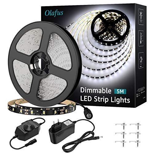 Olafus Tira LED 5M Regulable, Tira LED 12V Blanco Frío 6000K, 300 LEDs 2835 con Adaptor y Regulator Cinta LED para Decoración Interior Fiestas, Jardín, Dormitorio, Escaleras, Cocina, Gabinete, Bar