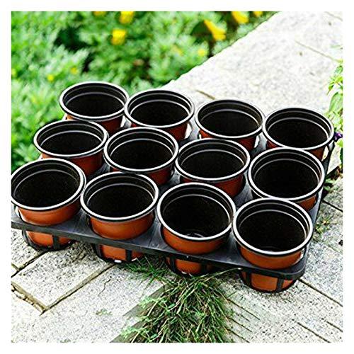 yywl Maceteros 50pcs plástico Grow Box Fall Resistente Planta de semillero Bandeja for jardín Tiesto vivero Trasplante plántulas de Flores Macetas 2020 Hot (Color : 120x100x85mm)