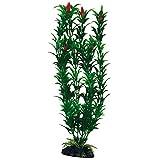 Amtra A8011252 Planta Clásica Egeria Flowers Bicolor, S