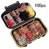 Faironly 40 Stück/Set Trockenfliegen Fliegenfischen Köder Kit Barsch Lachs Forellen Fliegen schwimmendes Sortiment mit Box 100 Stück